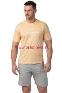 d5442fe9d3d0 Pánske krátke bavlnené pyžamo Matt žlto šedé